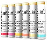 ArtNaturals Natural Lip Balm Beeswax - (6 x .15 Oz / 4.25g) - Gift Set of Assorted Flavors - Chapstick for Dry, Chapped & Cracked lips - Lip Repair with Aloe Vera, Coconut, Castor & Jojoba Oil