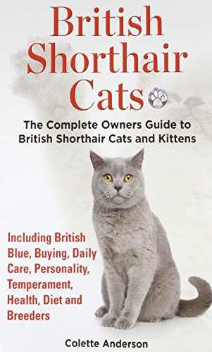Birman Cats The Owners Guide From Kitten To Old Age Buying