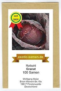 Rasch Gentle Elegance Vliestapete 724059 Uni Struktur rot 2,49€//1qm
