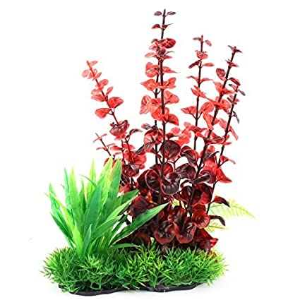 Amazon.com : eDealMax acuario pecera de plástico Césped Artificial decoración Vegetal 26cm Altura Red Green : Pet Supplies