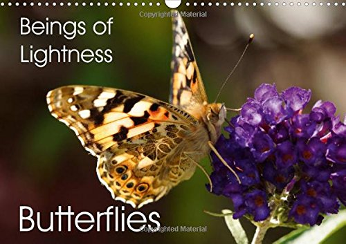 Download Beings of Lightness Butterflies 2016: A colorful selection of butterflies photographed in their natural habitat. (Calvendo Animals) pdf