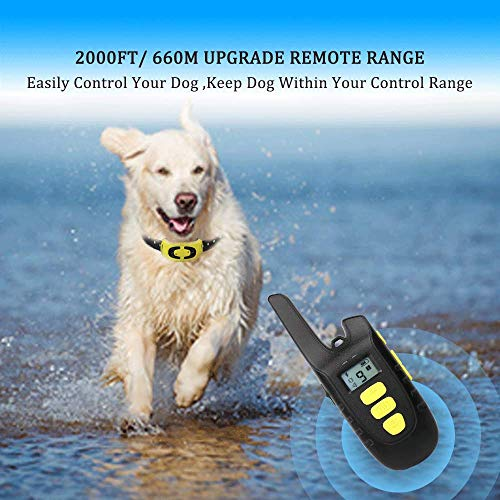 Fypet Shock Collar with Remote,2000ft/IP67 100% Waterproof Electric Shock/Vibration/Beep Control Dog Training Collar for Small Medium Large Dogs(2 Collars) by Fypet (Image #4)