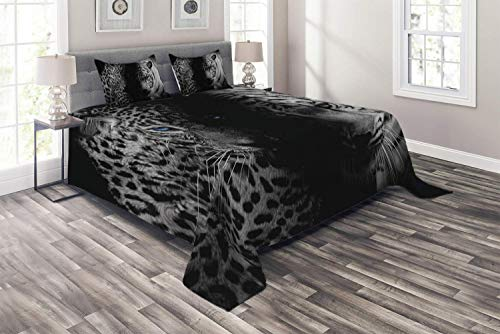 Black and White Coverlet Set Queen Size, Leopards with Blue Eyes Aggressive Powerful Wildcat Profile Print, 4 Piece Decorative Quilted Bedspread with 2 Pillow Shams, Black White Blue]()