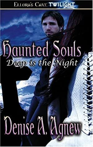 book cover of Haunted Souls