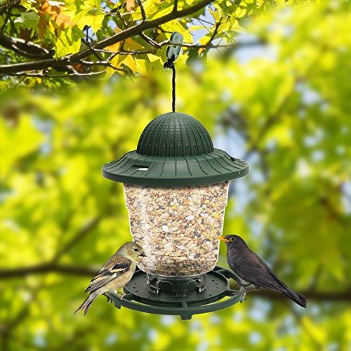 - ORIENTOOLS Bird Feeder 2-Pack Collapsible Hanging Lantern-Style Plastic Wild Solid Birdfeeder, Gazebo Round Feeders, Waterproof Outdoor Bird Watching, Green