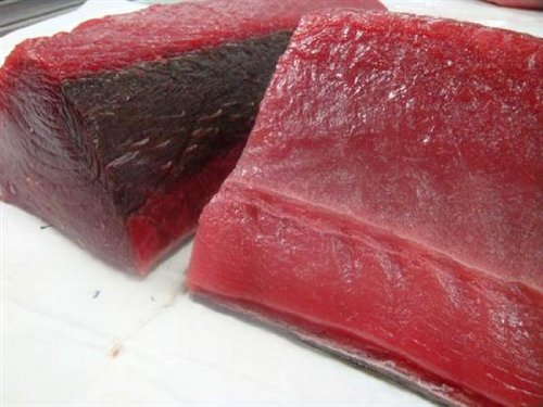 4 Pounds of Sushi Grade Yellowfin Ahi Tuna