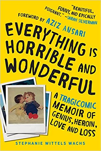 Book cover for Everything is Horrible and Wonderful