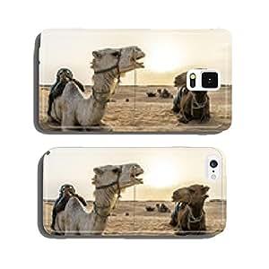 camel Tunisia cell phone cover case iPhone6 Plus