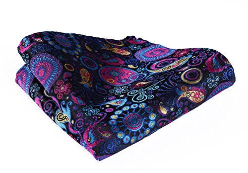 HISDERN Men's Paisley Party Pocket Square Handkerchief Navy ()