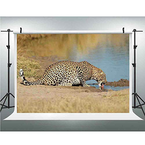 (Seamless Vinyl Photo Backdrop,Safari Decor,Photography Background Red Wood Backdrop,10x20ft,Leopard Panther Drinking at Waterhole Safari Wild South African Animal Documentary Print)