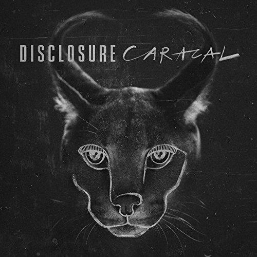Disclosure - Willing & Able Lyrics - Zortam Music