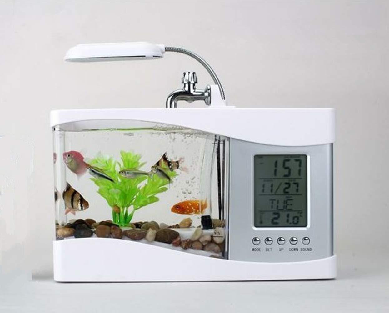 Mini Acuario USB Peces De Escritorio/Tanque De Peces Pequeños con LED Reloj,White: Amazon.es: Deportes y aire libre