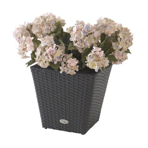 DMC Products 24-Inch Square Resin Wicker Vista Planter (Dmc Flower)