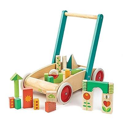 Tender Leaf Toys Baby Block Walker : Baby