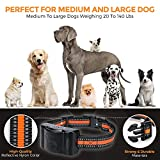 Petural Dog Bark Collar,Anti-Barking Collar