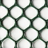 Plastic Poultry (Chicken) Netting Fence -Multipurpose for Garden as Physical Barrier--2ft x 25ft-Rustless,Dark Green