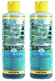 home drinking water treatment plant EasyCare 2 PACK FounTec Algaecide and Clarifier - 8 oz, Yellow