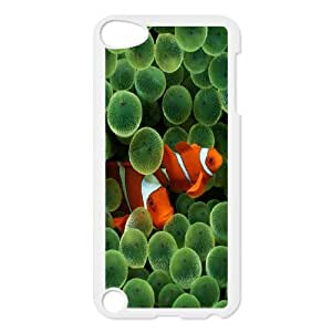 Ipod Touch 5 Phone Case Colorful fish A23D349607