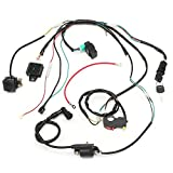 electrical coil - Annpee Complete Electrics CDI Coil Wiring Loom Harness Kick for 50cc 110cc 125cc ATV Dirt Bike
