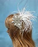 Feather Crystal Veil, Bridal Wedding Veil, Birdcage Bridal Veil