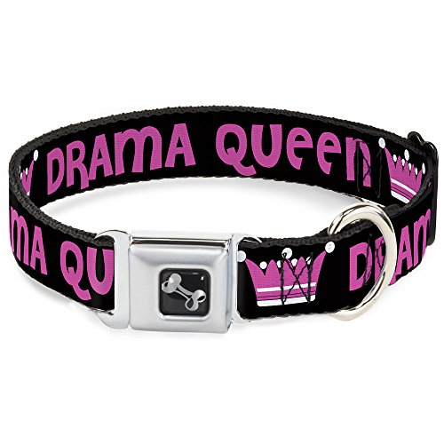 Dog Collar Seatbelt Buckle Drama Queen Black Fuchsia 11 to 17 Inches 1.0 Inch Wide