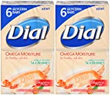 Best Glycerin Soaps - Dial Omega Moisture Sea Berries Glycerin Bar Soap Review
