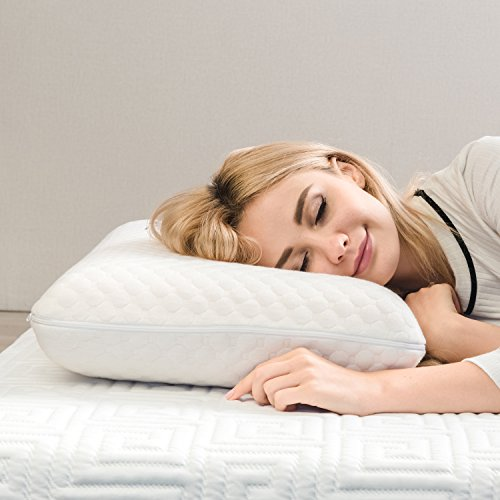 TAMPOR Memory Foam Pillow Premium Bed Pillows for Neck Support Hypoallergenic Neck Pillow for Sleeping with Removable Pillow Cover, for Back & Side Sleepers, Standard