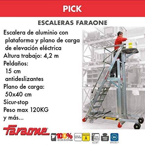 ESCALERA PROFESIONAL PICK. FARAONE. LCS (PICK25. 10Peldaños): Amazon.es: Bricolaje y herramientas