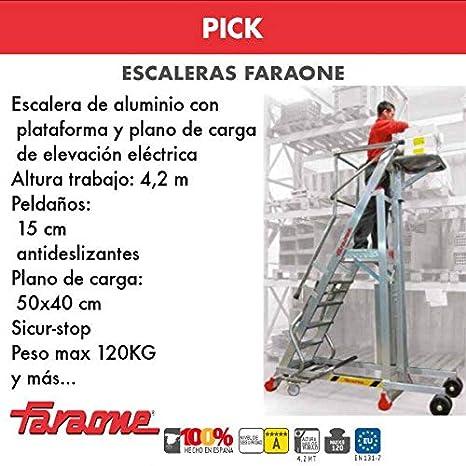 ESCALERA PROFESIONAL PICK. FARAONE. LCS (PICK25. 10Peldaños ...