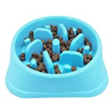 Ootdpet Fun Feeder Slow Feed Dog Bowl Slow Feed Interactive Bloat Stop Dog Bowl