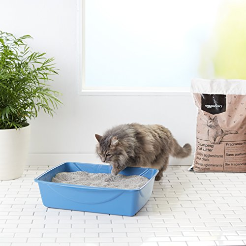 Clay Litter For Cats How Long