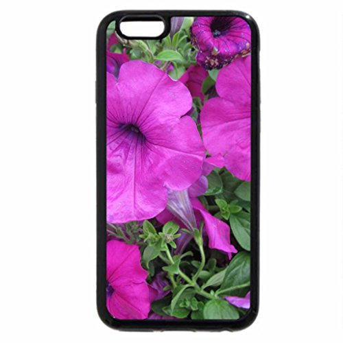 iPhone 6S / iPhone 6 Case (Black) Flowers day at the greenhouse 46
