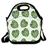 Best PackIt Ladies Lunch Bags - Green Leaf Pattern Insulated Lunch Bag Large Reusable Review