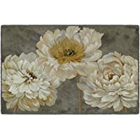 Brumlow Mills EW10331-30x46 Pearl Grey Floral Study Kitchen and Entryway Rug, 26 x 310