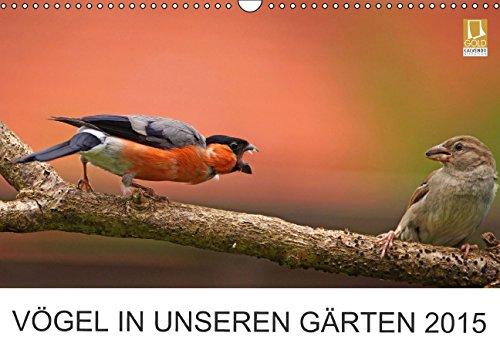 Vögel in unseren Gärten 2015 (Wandkalender 2015 DIN A3 quer): Heimische Vogelarten in unseren Gärten. Fotografiert von Lutz Klapp. (Monatskalender, 14 Seiten)