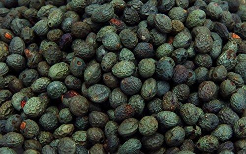 turpentine-tree-terebinth-tree-pistacia-terebinthus-500-fresh-seeds