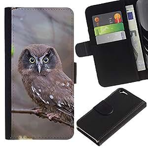 Apple (4.7 inches!!!) iPhone 6 , la tarjeta de Crédito Slots PU Funda de cuero Monedero caso cubierta de piel (Inspecting Owl)