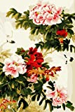 [ New Release, Wooden Framed or Not ] Diy Oil Painting by Numbers, Paint by Number Kits - Chinese Peony Flower 16*20 inches - PBN Kit for Adults Girls Kids Christmas - D123