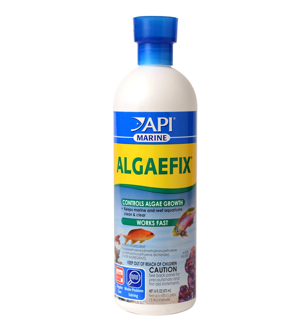 API MARINE ALGAEFIX Algae Control Solution 16-Ounce Bottle by API