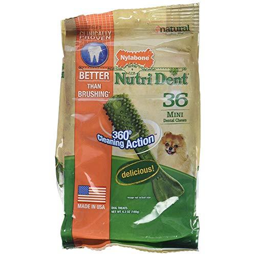 - Nylabone Nutri Dent Limited Ingredient Dental Dog Chews, Petite (Up To 10 Lbs), Green