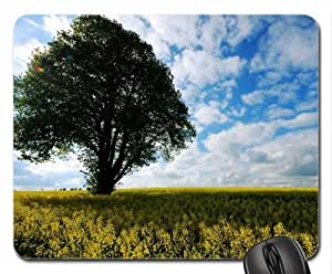 Big Brother-Evening Beauty Mouse Pad, Mousepad (Forces of Nature Mouse Pad)