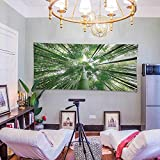 Home Decor (60W x 51L Inch) Tapestry Wall Hanging Art Living Room Bedroom Dorm Home DecorBamboo Decor Tropical Rain Forest Tall Bamboo Trees in Grove Exotic Asian Nature Zen Decor Style Image Gre
