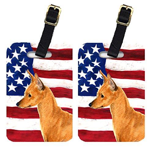 Caroline 's Treasures ss4222btペアのアメリカ国旗with Min Pin荷物タグ、L、マルチカラー   B00RZSYP38
