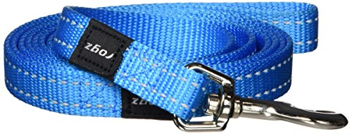 "Reflective Dog Leash for Medium Dogs, 5/8"" wide, 6' long, Turquoise"