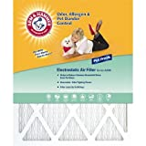 Arm and Hammer AF-AH2030 20-Inch by 30-Inch by 1-Inch Pet Fresh Pet Protection Air Filter