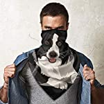 Border Collie Neck Gaiter Warmer Windproof Face Mask Scarf Outdoor Sports Mask 9