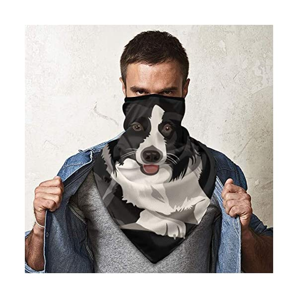 Border Collie Neck Gaiter Warmer Windproof Face Mask Scarf Outdoor Sports Mask 4