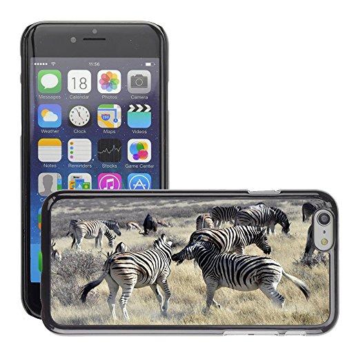 "Bild Hart Handy Schwarz Schutz Case Cover Schale Etui // M00134189 Zebras kämpfen Africa Safari // Apple iPhone 6 PLUS 5.5"""