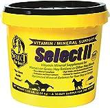 RICHDEL Select Ii Vitamin/Mineral
