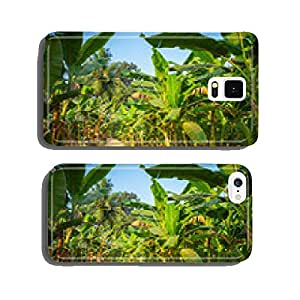 Rural landscape common road through banana plantation in India cell phone cover case iPhone5